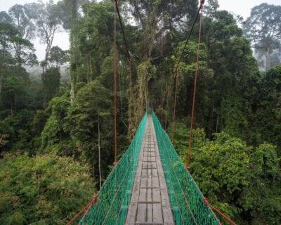 Danum Valley Malasia