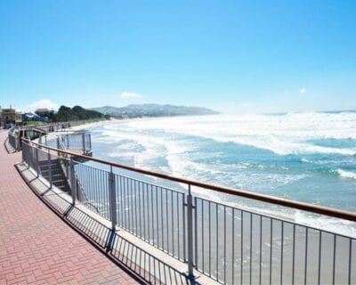 Dunedin Nueva Zelanda