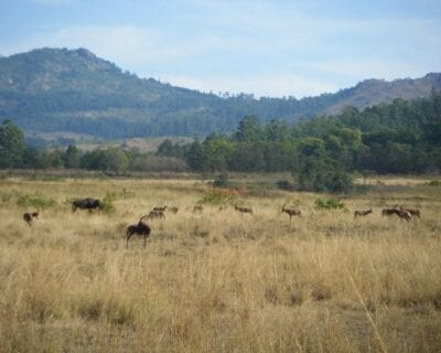 Ezulwini Suazilandia
