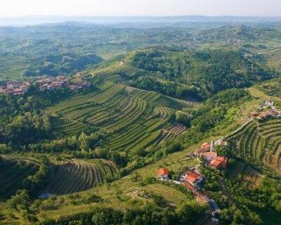Goriška Brda Eslovenia