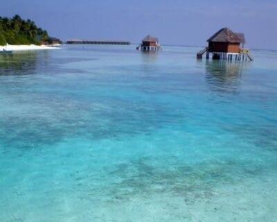 Ihuru (Angsana) Maldivas