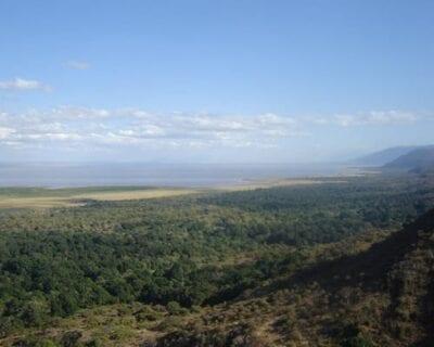 Lago Manyara Tanzania