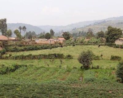 Lake Bunyonyi (Kabale) Uganda