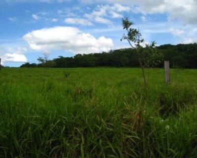Montes Claros Brasil