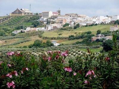 Montilla España