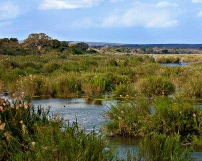 Parque Nacional de Kruger República de Sudáfrica