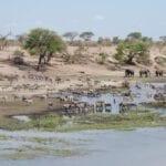 Parque nacional de Nxai Pan Botswana