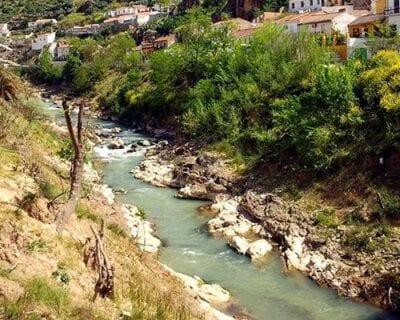 Pinos Puente España