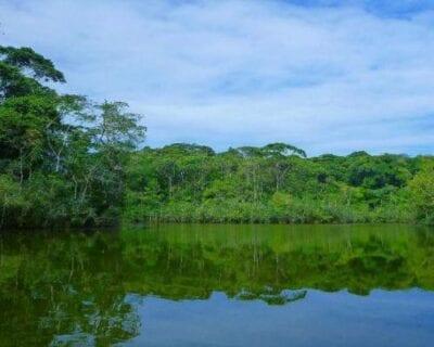 Puerto Viejo Sarapiqui Costa Rica