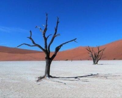 Sesriem Naukluft Namibia