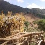 Turmi Etiopía