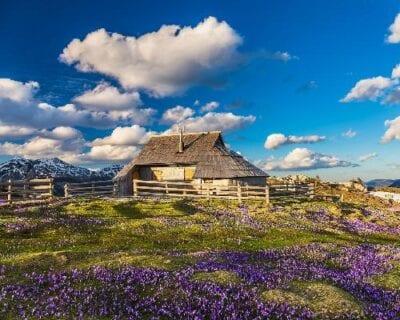 Velika planina Eslovenia