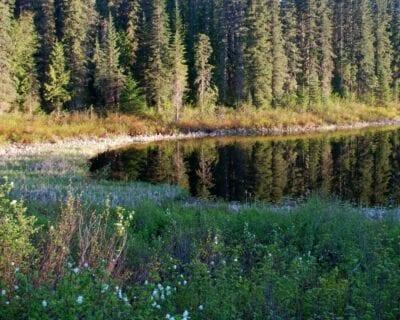 Wells Gray Canadá