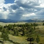 Yellowstone Parque Nacional WY Estados Unidos