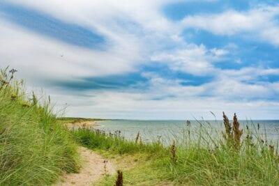 Aberdeen Playa Hierba Reino Unido