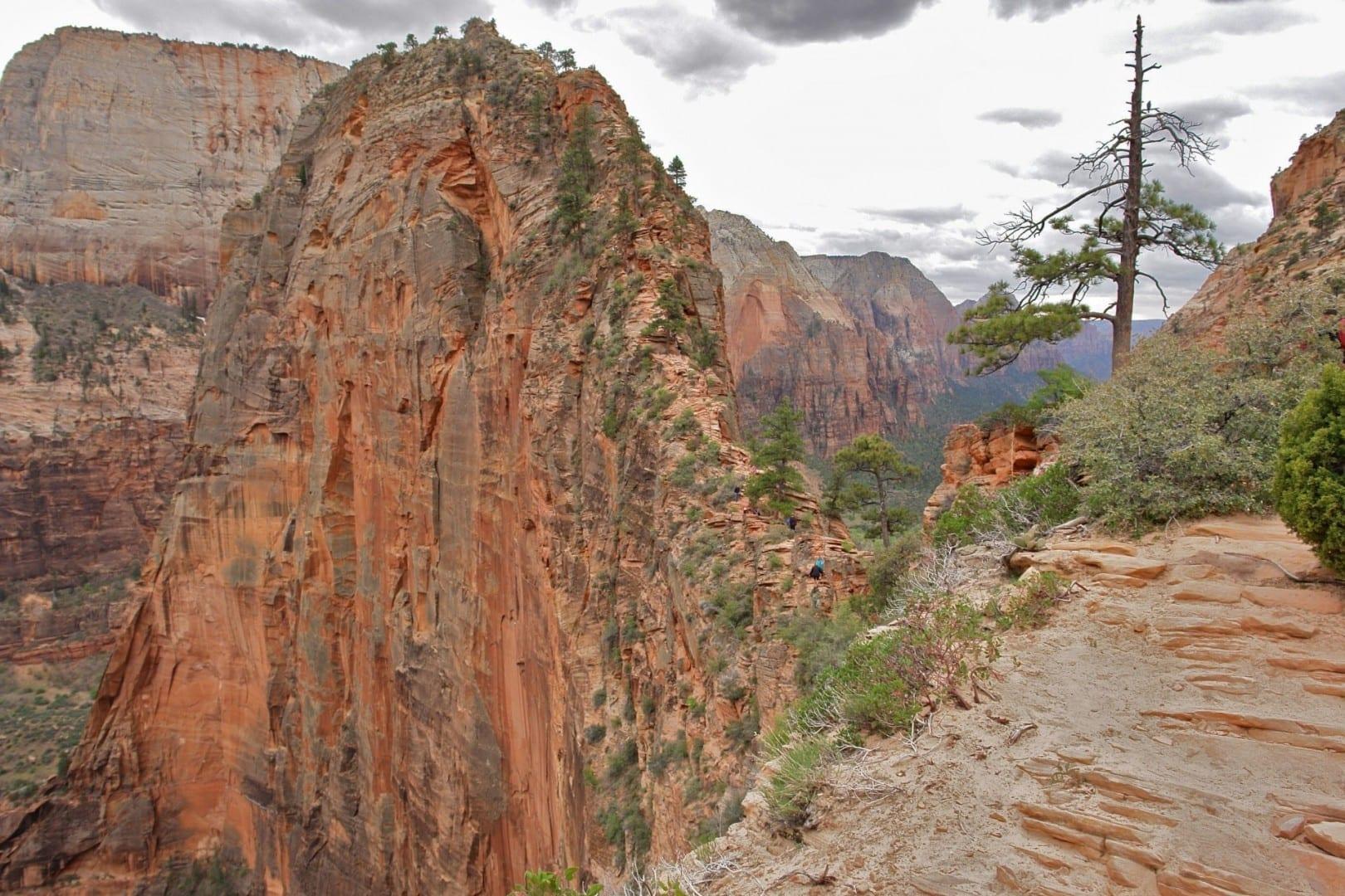 Aterrizaje de los ángeles Zion Parque Nacional UT Estados Unidos