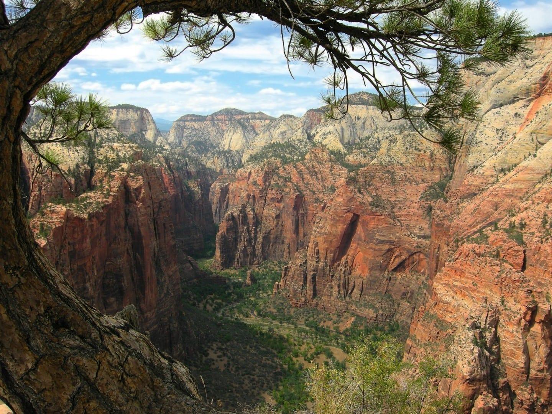 Cañón de Zion, visto desde Angels Landing Zion Parque Nacional UT Estados Unidos