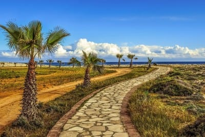 Camino De Ronda Palmeras Mar España