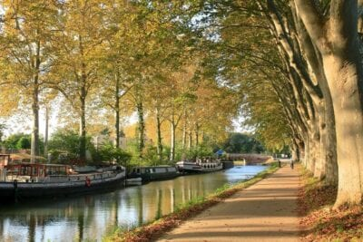 Canaldumidi Toulouse árboles Francia