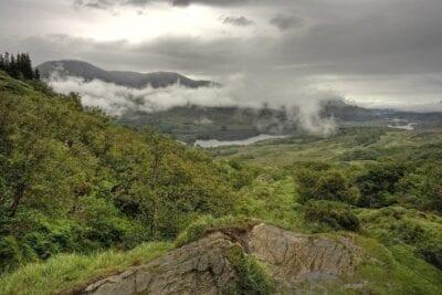 Deforestación Forestales Killarney Irlanda