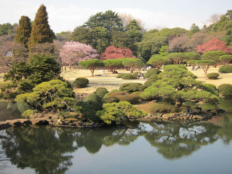 El Jardín Nacional de Shinjuku Gyoen Shinjuku Japón