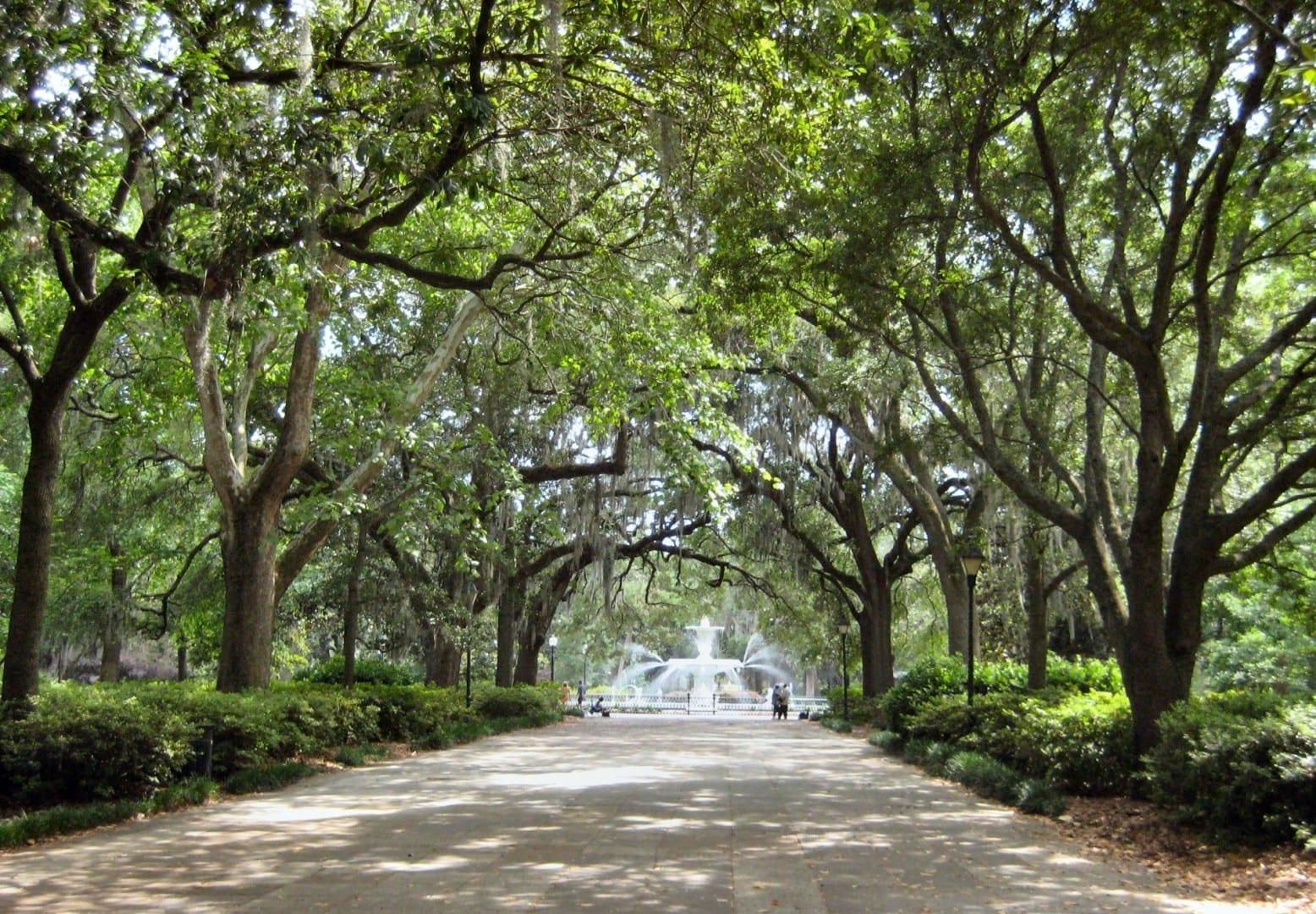 El parque Forsyth con los robles y el musgo español que caracterizan a Savannah Savannah GA Estados Unidos