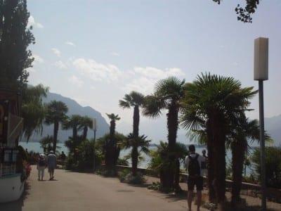 El paseo del lago está bordeado por cafés, restaurantes, bares y... palmeras. Montreux Suiza