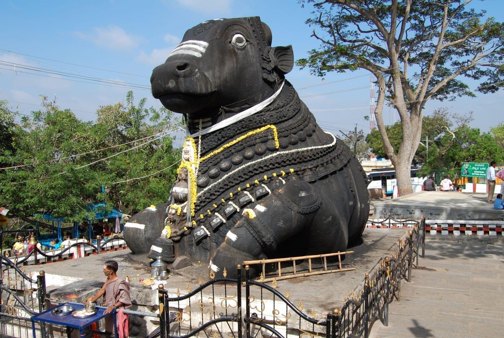 El toro sagrado Nandi en el Templo del Toro Mysore India
