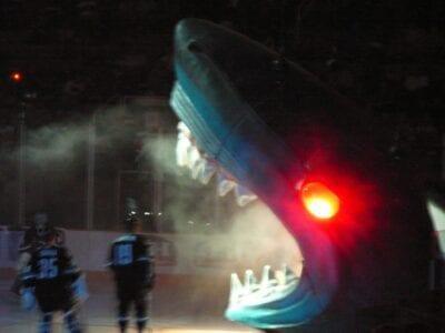 Estás en su hielo cuando el tiburón de San José es bajado del techo de la arena, cariñosamente conocido como