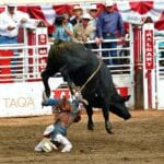 Estampida Calgary Bull Riding Canadá