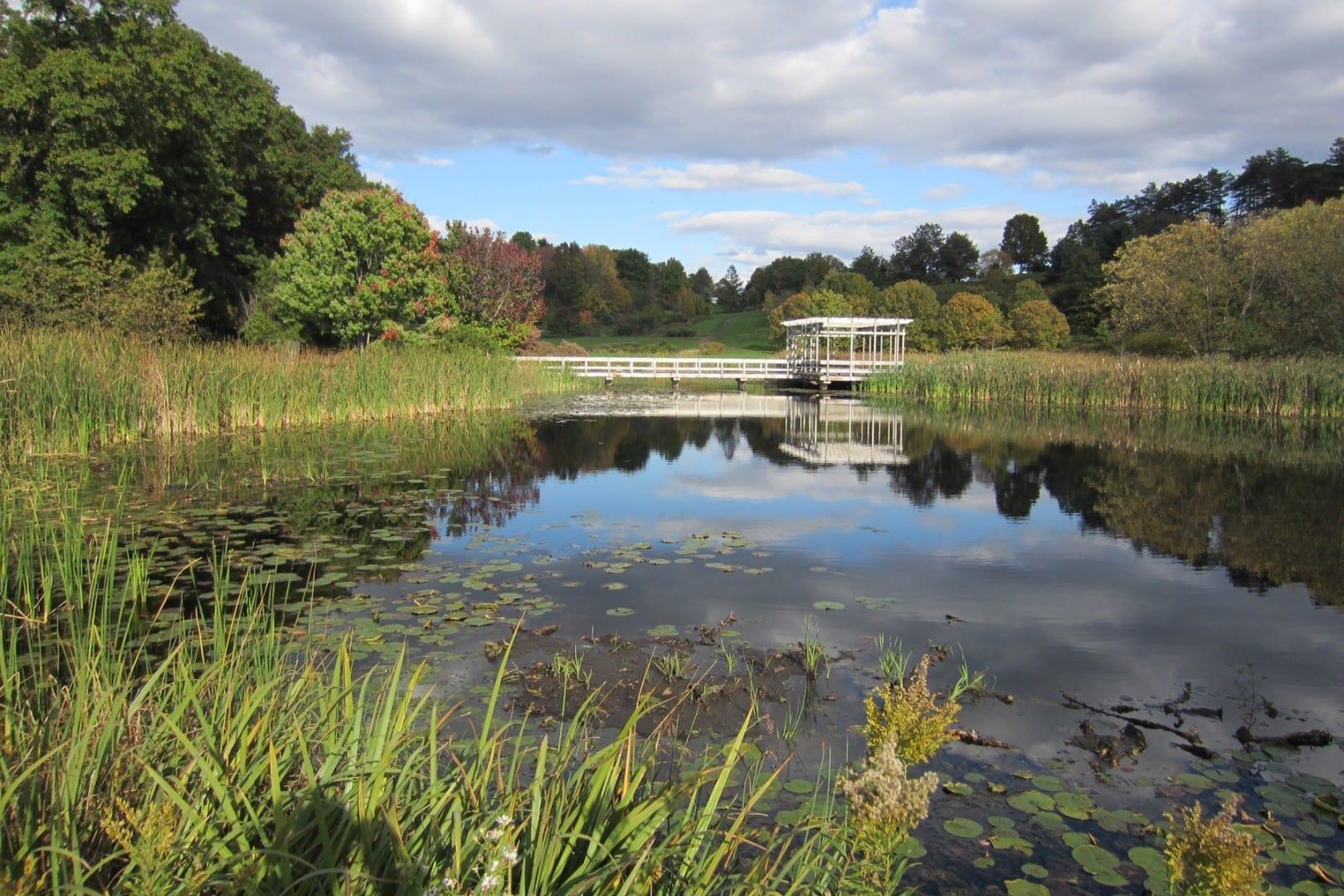 F.R. Newman Arboretum, Universidad de Cornell Ithaca NY Estados Unidos