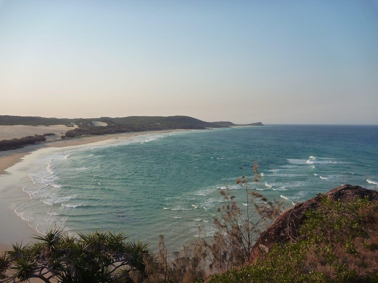 Fraser Island Australia Cabeza De Indio Australia