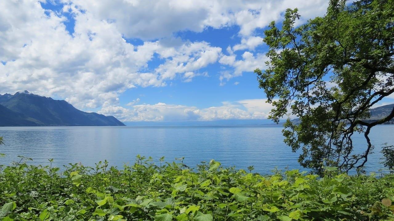 Lago De Ginebra Geneva Suiza Suiza