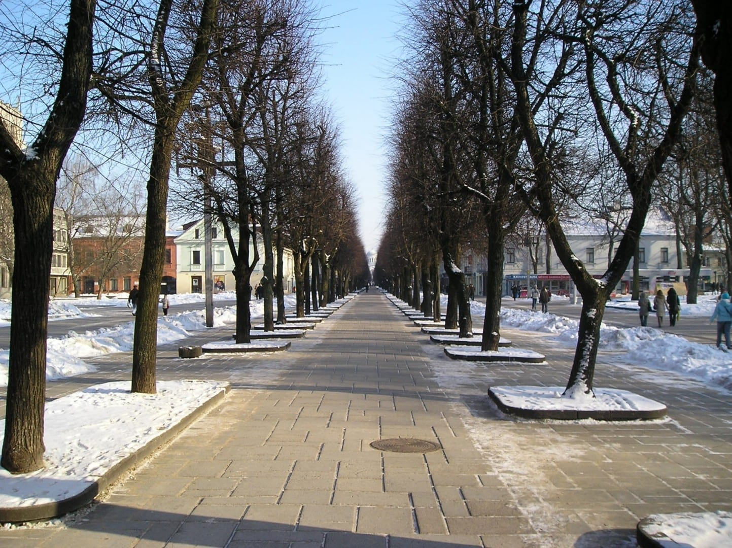 Laisvės Alėja en Kaunas Kaunas Lituania