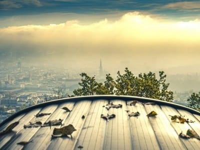Linz Punto De Vista Por La Noche Austria