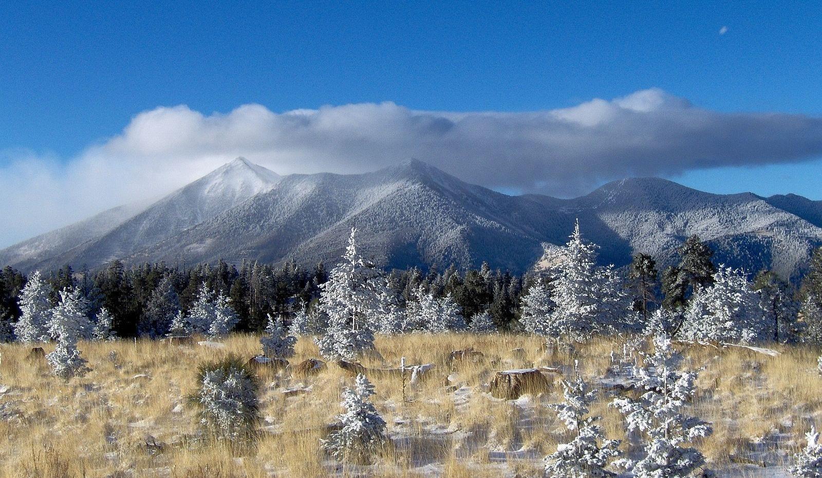 Los picos de San Francisco vistos desde el Monte Elden Flagstaff AZ Estados Unidos