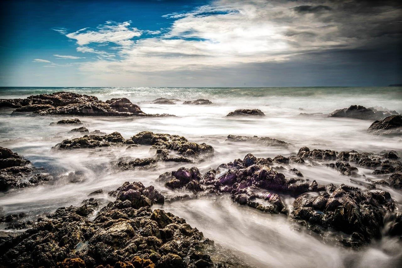 Mar En Calma Rocas Del Mar Wellington Nueva Zelanda