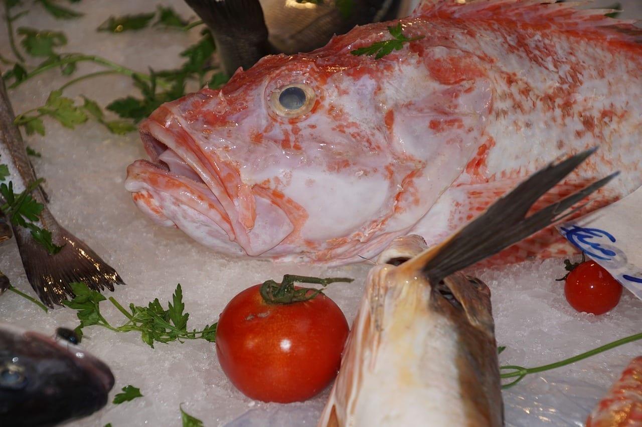 Mercado De Pescado Palermo Sicilia Italia