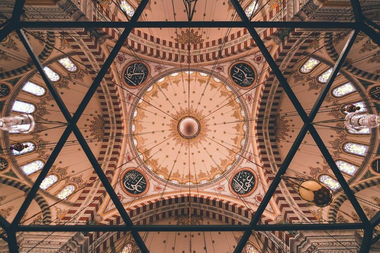 Mezquita Pavo Estambul Turquía