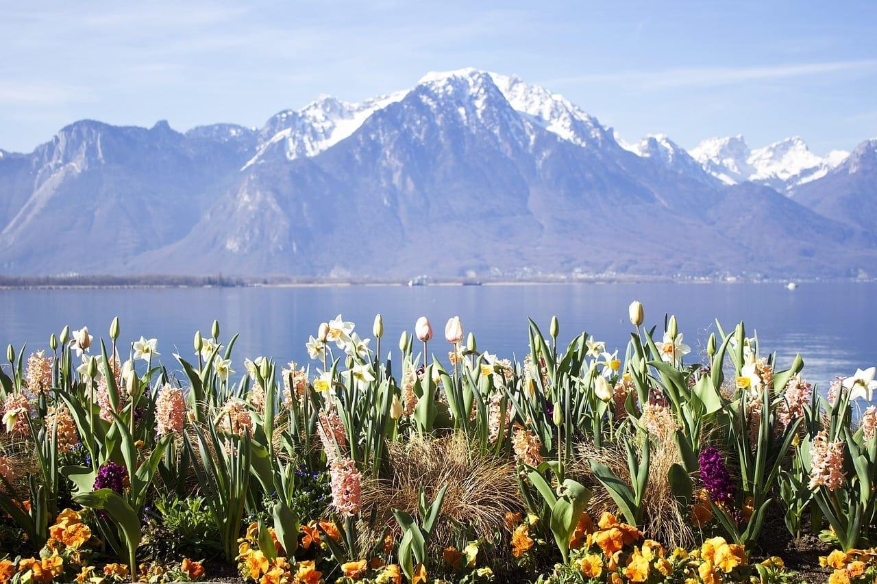 Montreux Lago Suiza Suiza