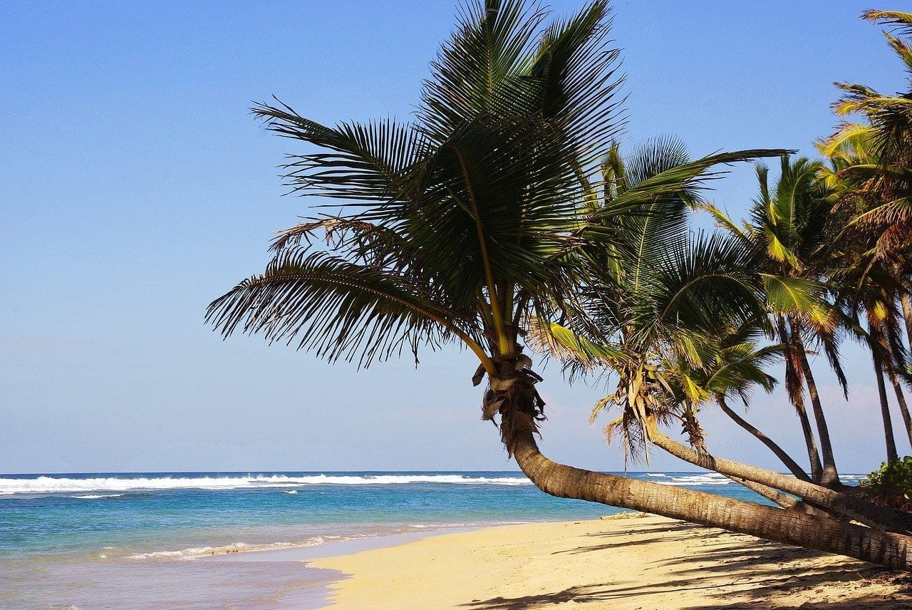 Punta Cana Bavaro Playa República Dominicana