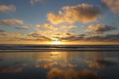 San Diego Torrey Pines Parque Estatal Playa Estados Unidos