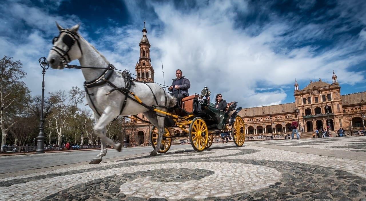 Sevilla Caballo España España
