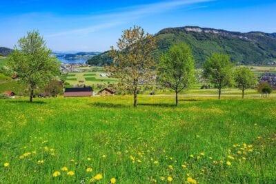 Stanserhorn Lago De Lucerna Lago Suiza
