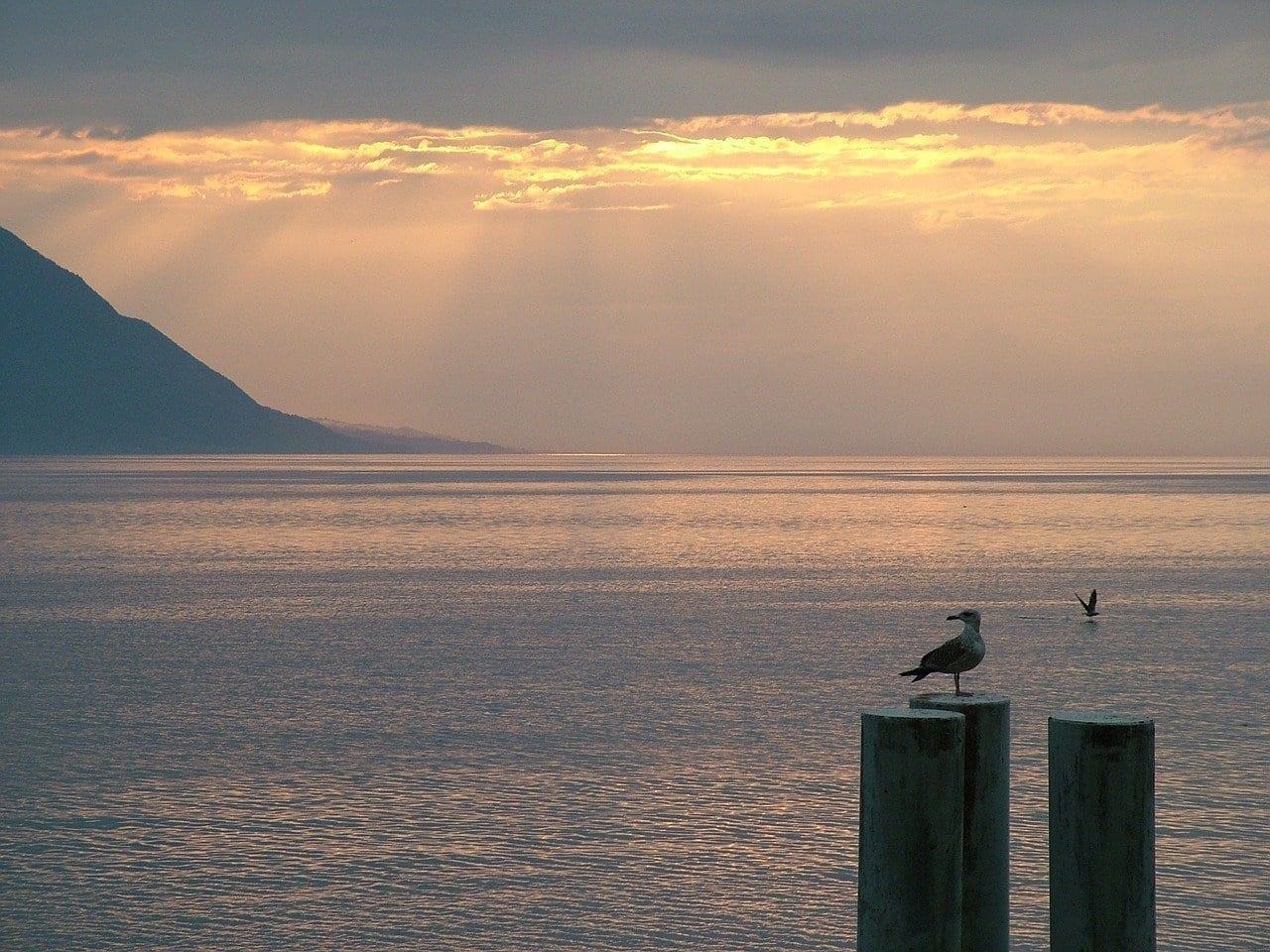 Suiza Montreux Lago De Ginebra Suiza