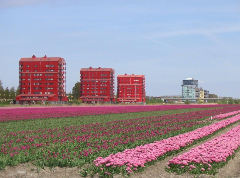 Almere tiene su cuota de vistas para contemplar Almere Países Bajos