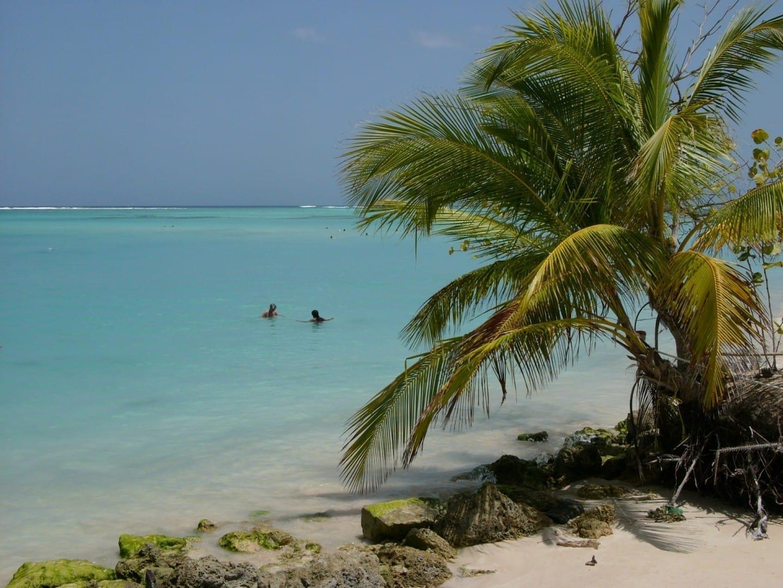 Arrecife de Buccoo Tobago Trinidad y Tobago