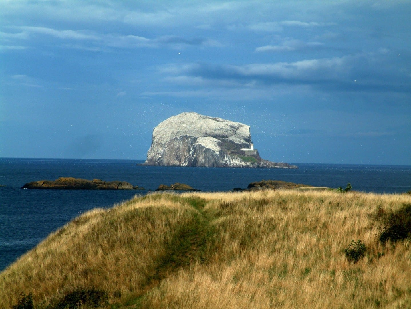 Bass Rock North Berwick Reino Unido