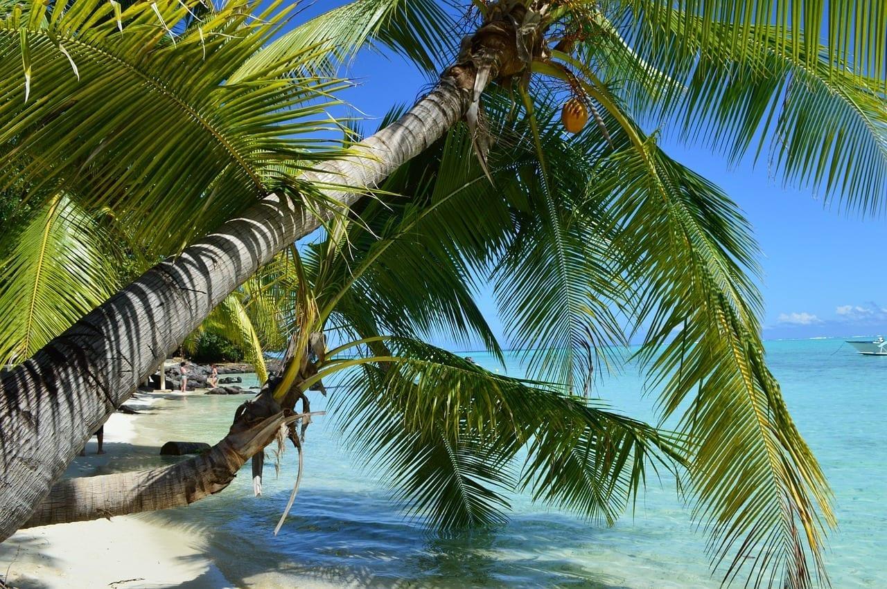 Bora Bora Playa Beach Polinesia Francesa