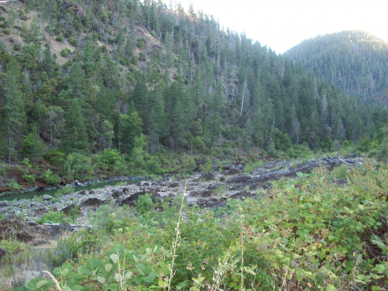 Bosque, colina y río a lo largo de la carretera del río Illinois Peoria IL Estados Unidos